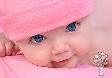 Bebek Hakkında Herşey