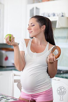 Hamilelikte Sağlık ve Güvenlik